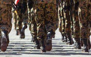 Jakiego kamuflażu używa Polskie Wojsko?